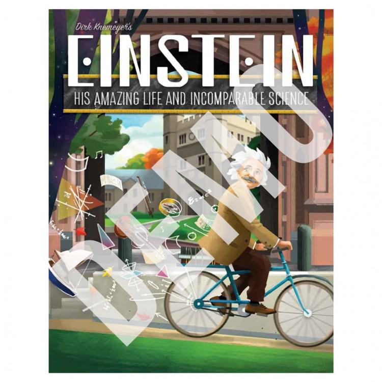 Einstein DEMO