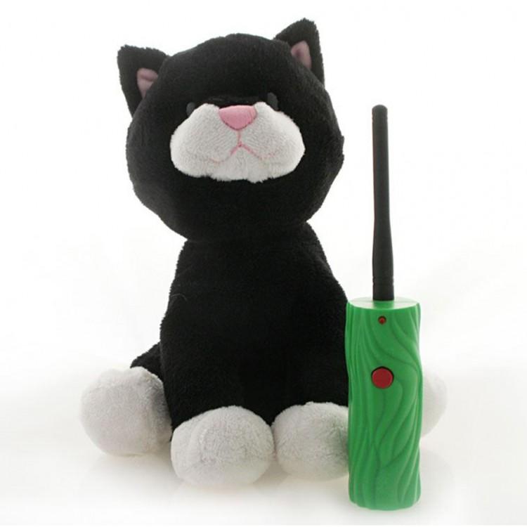 Hide & Seek Pals: Kupcake the Kitten
