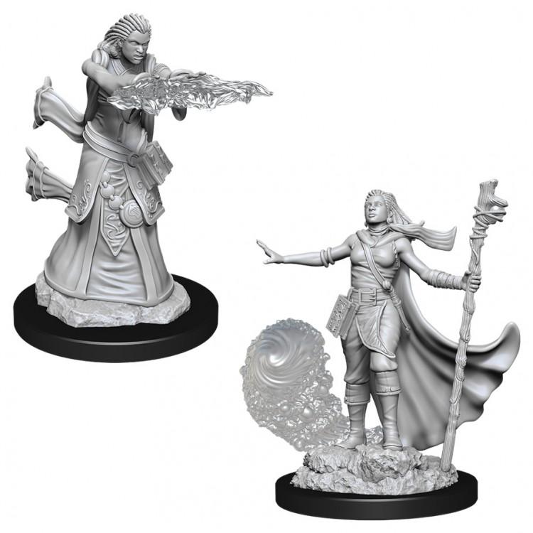 D&D: NMU: Female Human Wizard W11