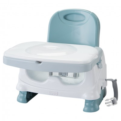 FP:Healthy Care: Deluxe Booster Seat (2)
