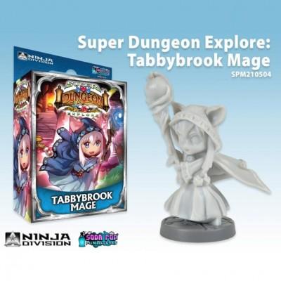 SDE: Tabbybrook Mage