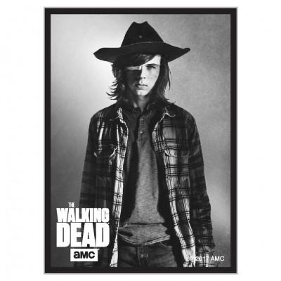 DP: Walking Dead: Carl (50)