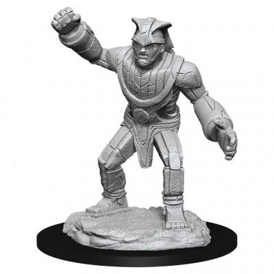 D&D: NMU: Stone Golem W11